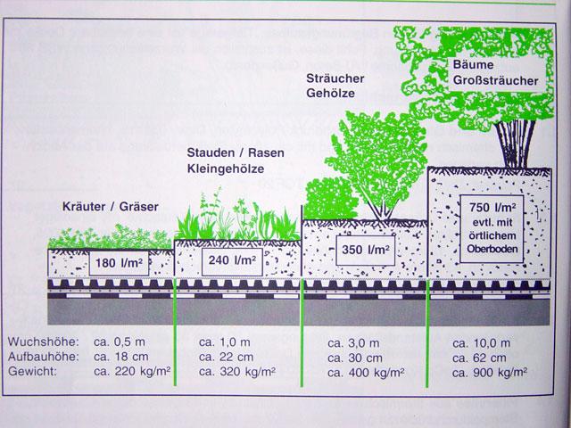 Beliebt Bevorzugt Dachbegrünung von Koch | Garten- und Landschaftsbau #QV_47